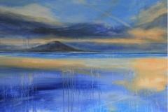 Fiona Campbell-Lycett