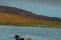 Lorna Boak	<i>Cattle on Vallay Strand</i>	Arcylic	£2