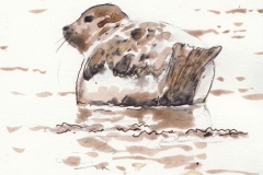 Bill Neill 	<i>Seal</i>	Watercolour	£38