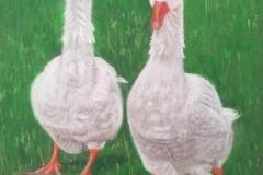 Sandra Hutton<i>Geese</i>Pastel£20