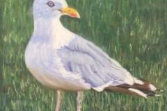 Sandra Hutton<i>Gull</i>Pastel£20