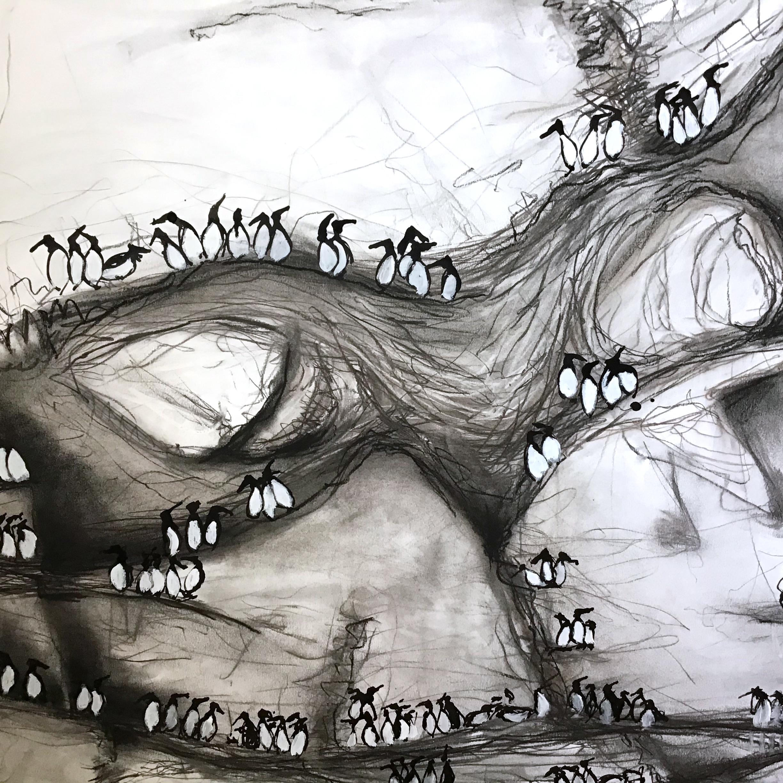 The Living Wall – Guillemot Cliffs